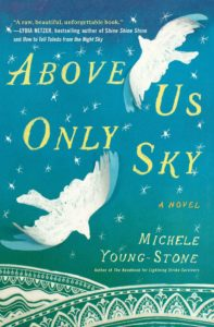 above-us-only-sky